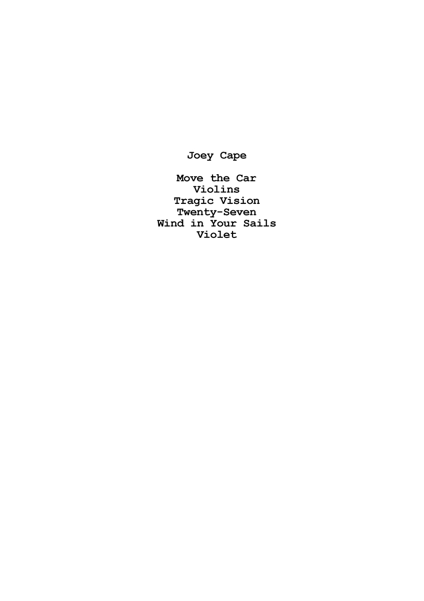 7 3 Listing Joey Cape copie